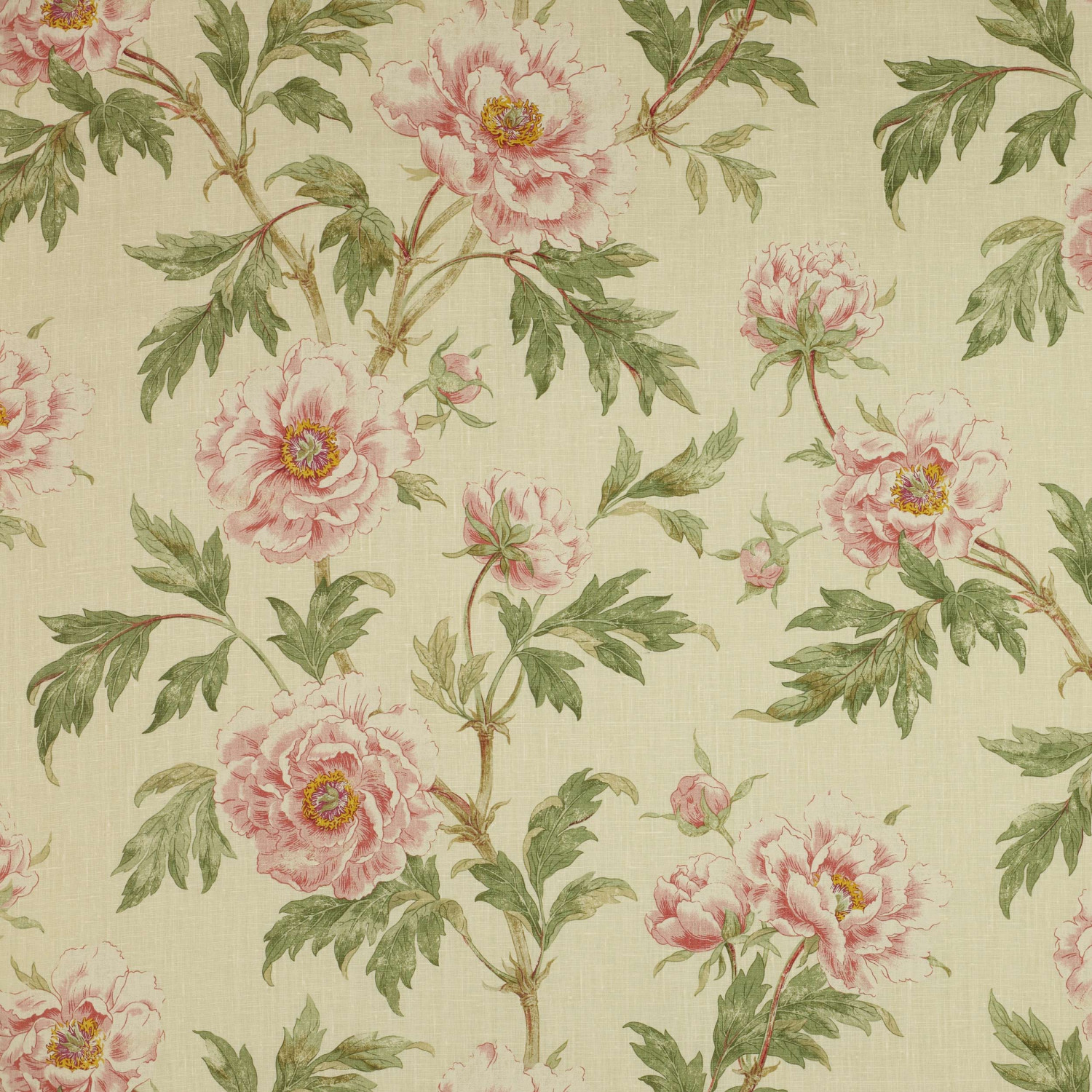 Colefax and Fowler Stoff Tree Peony · Pink/Green F3527/04